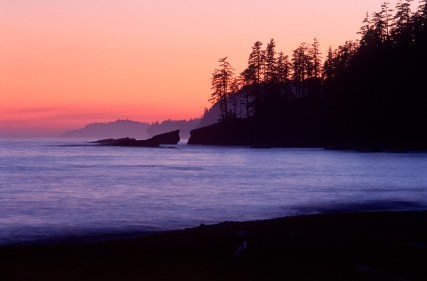 Beach at sunset tofino bc vancouver island