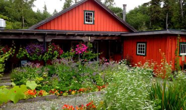 The Tofino Botanical Gardens is a Nature Lover's Delight