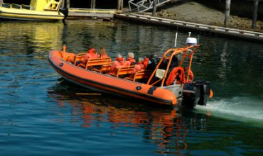 Check Out Popular Vessels For Vancouver Island Whale Watching
