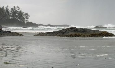 Book Tofino Accommodations Early And Enjoy A Great Vacation