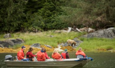 5 of the Top Vancouver Island Tourist Attractions to Try this Summer