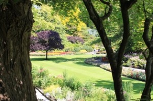 This area has an amazing view of only a small portion of what Butchart Gardens has to offer.