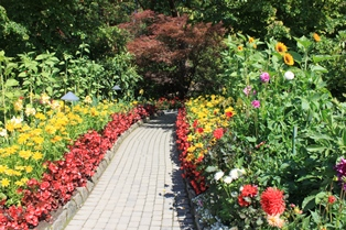 This pathway leading into the Japanese Garden is lined by an assortment of various flowers.