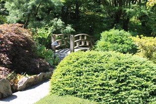 To cross into the Japanese Garden, this bridge leads to a portion of Butchart Gardens.