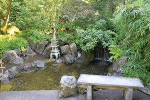 Here is one of the many ponds are featured in the Japanese Garden.