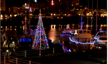 25th Annual Lighted Ship Parade