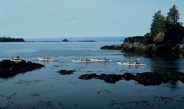 Beginners' Kayaking Tips for Travel to Vancouver Island