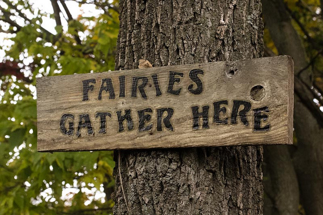Victoria Events – Enchanted Forest Festival