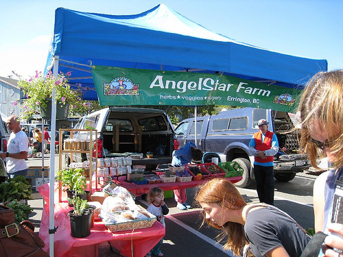 Campbell River Events – Pier Street Farmers Market