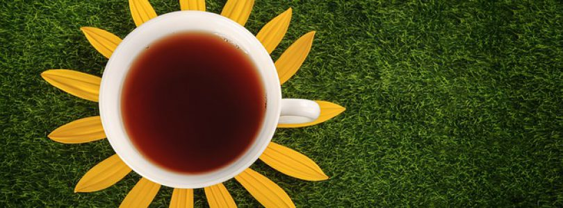 Cup of tea and flower petals