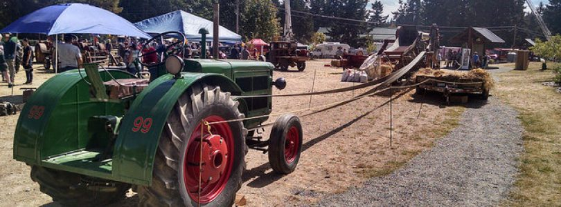 Cobble Hill Events-Cobble Hill Fair 2017
