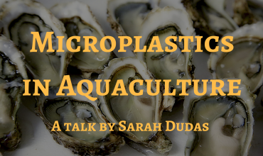 Ucluelet Fall Events-Microplastics in Aquaculture - A Talk by Sarah Dudas