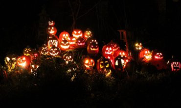 Parksville Fall Events-Pumpkins on the Drive
